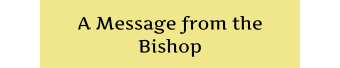 nimble_asset_MessageBishop2-1